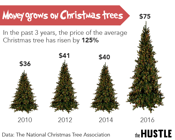 Christmas Tree Prices Are Out Of Control